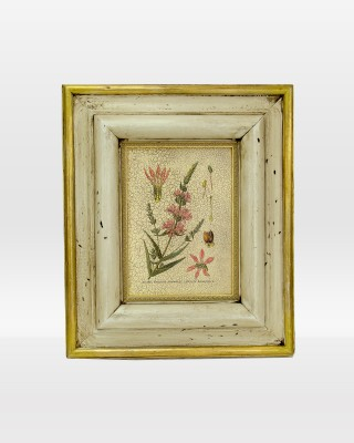 Floral Botanical Name Print on Wood