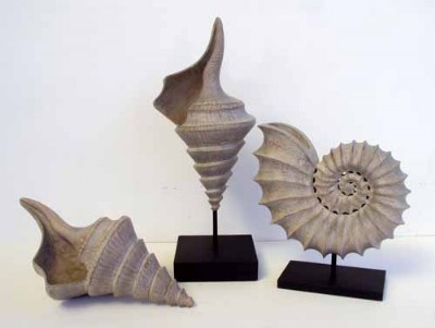 SEASHELL SCUPLTURE