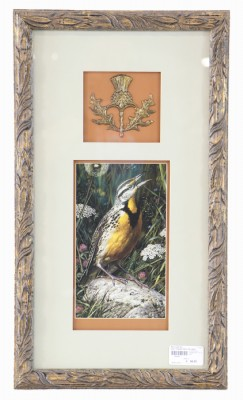 Fancy Framed Print of a Bird